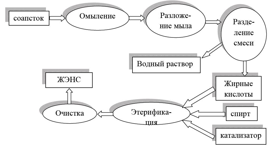 biodizelnoe-goru4ee1